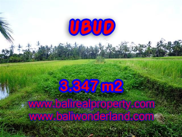 Extraordinary Land for sale in Ubud Bali, green valley and river view in Ubud Center– TJUB380