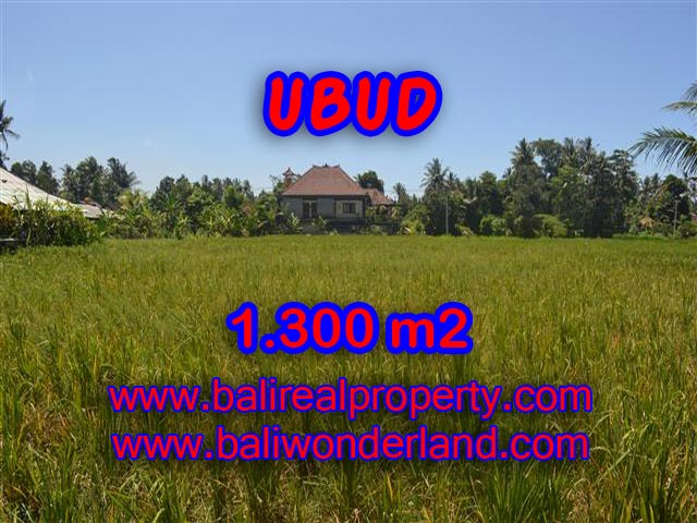 Land for sale in Bali, exceptional view in Ubud Center  – TJUB386