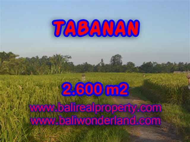 Stunning Land for sale in Bali, rice fields, mountain and ocean view in Tabanan Bali – TJTB129