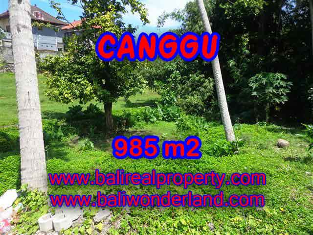 Magnificent Land for sale in Bali, River view in Canggu Pererenan Bali – TJCG147