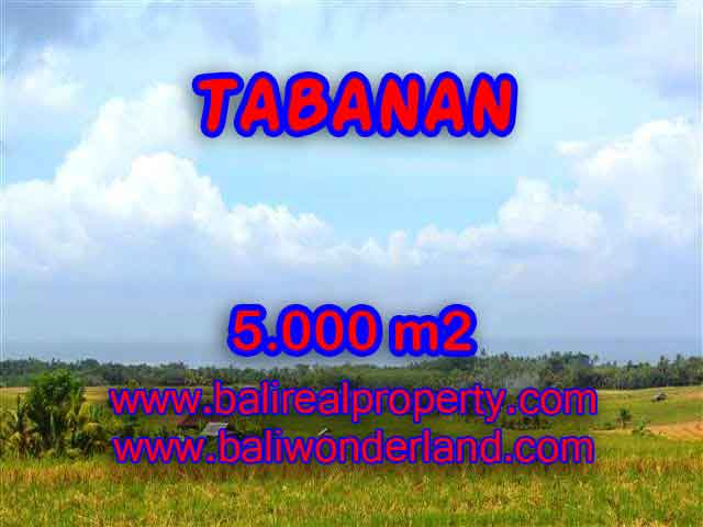 Fantastic Land for sale in Bali, paddy fields, mountain, river and ocean view in Tabanan Selemadeg – TJTB124