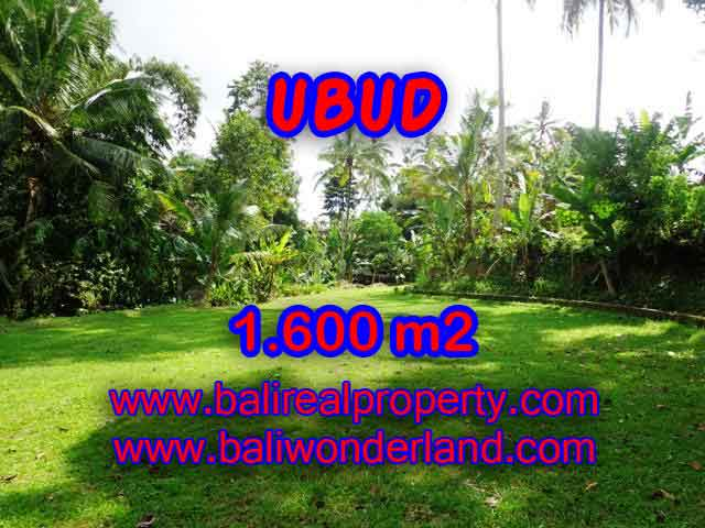 Excellent Property for sale in Bali, land for sale in Ubud Bali  – TJUB416