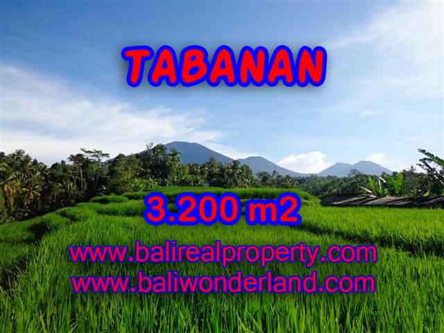 Land in Bali for sale, attractive view in Tabanan Penebel Bali – TJTB118