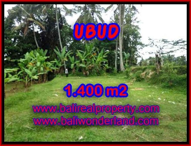 Exceptional Property in Bali, land for sale in Ubud Bali – TJUB419