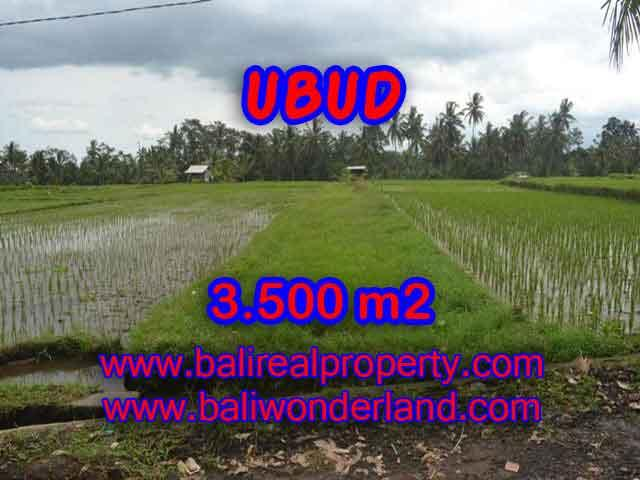 Stunning Land for sale in Bali, rice fields, Forest and River view in Ubud Bali - TJUB395