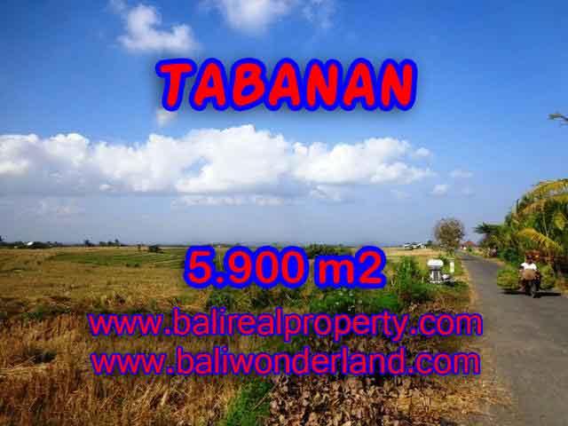 Land for sale in Bali, wonderful view in Tabanan Bali – TJTB131