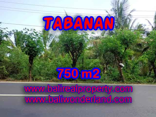Outstanding Property in Bali for sale, land in Tabanan for sale – TJTB138