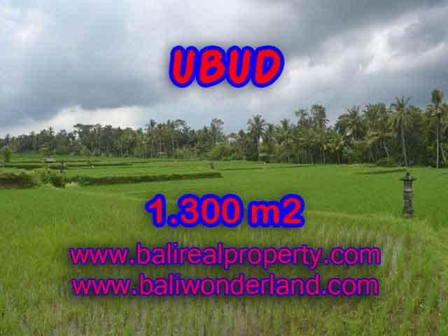 Land in Bali for sale, Outstanding view in Ubud Pejeng Bali – TJUB394