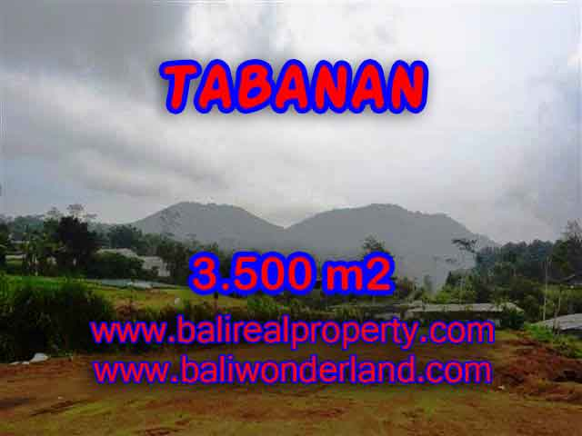 Land in Tabanan Bali for sale, nice view in Tabanan Bedugul Bali – TJTB102
