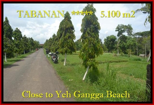 Beautiful Tabanan yeh Gangga BALI LAND FOR SALE TJTB186
