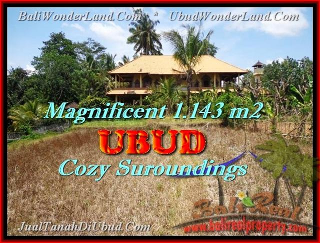 Beautiful UBUD BALI LAND FOR SALE TJUB460