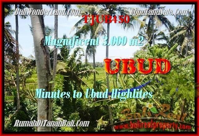 FOR SALE Magnificent LAND IN Sentral Ubud TJUB450