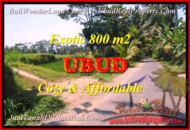 FOR SALE Exotic PROPERTY 800 m2 LAND IN UBUD TJUB457