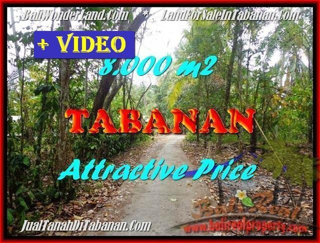 8,000 m2 LAND SALE IN Tabanan Selemadeg TJTB161