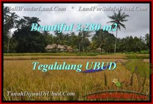 FOR SALE Beautiful 3,280 m2 LAND IN UBUD TJUB463