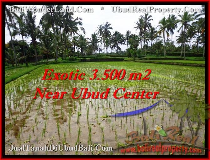 Exotic LAND FOR SALE IN Ubud Tegalalang BALI TJUB477