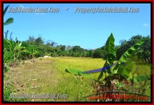 Exotic LAND FOR SALE IN Jimbaran Ungasan TJJI075
