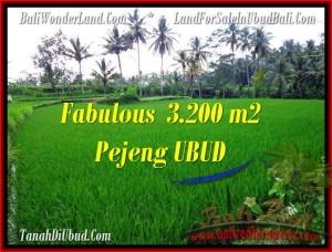 Magnificent 3,200 m2 LAND FOR SALE IN UBUD BALI TJUB484