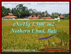 FOR SALE Magnificent PROPERTY 1,500 m2 LAND IN UBUD BALI TJUB488
