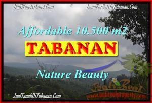 Exotic 10,500 m2 LAND FOR SALE IN TABANAN BALI TJTB165