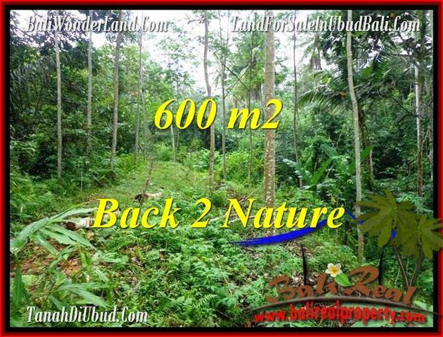 Beautiful PROPERTY 600 m2 LAND FOR SALE IN Ubud Tampak Siring TJUB493
