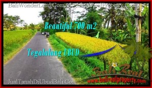 Exotic PROPERTY LAND FOR SALE IN UBUD TJUB497