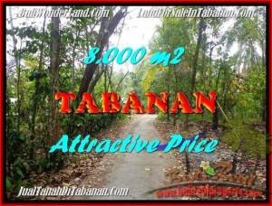 Affordable PROPERTY 8,000 m2 LAND SALE IN TABANAN BALI TJTB161