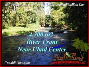 Exotic 4,315 m2 LAND FOR SALE IN UBUD BALI TJUB499