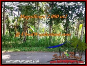 Beautiful UBUD BALI 2,000 m2 LAND FOR SALE TJUB506
