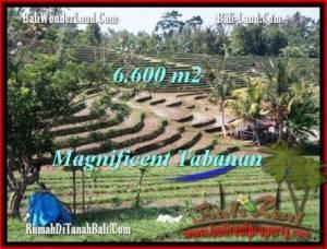 Beautiful PROPERTY 6,600 m2 LAND FOR SALE IN Tabanan Selemadeg TJTB204