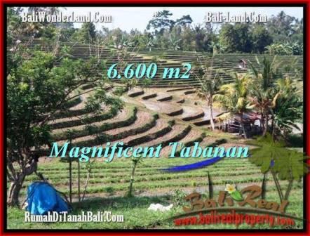 Affordable PROPERTY TABANAN BALI 6,600 m2 LAND FOR SALE TJTB204