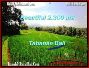 Exotic PROPERTY LAND FOR SALE IN TABANAN TJTB209