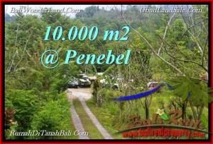 LAND IN  TABANAN Jatiluwih BALI FOR SALE TJTB214