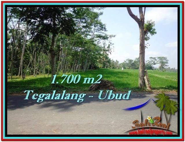 Affordable PROPERTY LAND FOR SALE IN UBUD TJUB518