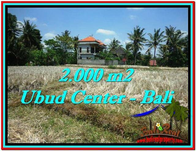 Magnificent UBUD BALI 2,000 m2 LAND FOR SALE TJUB524