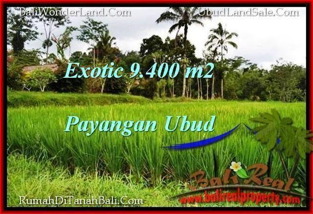 FOR SALE Affordable PROPERTY 9,400 m2 LAND IN UBUD BALI TJUB526