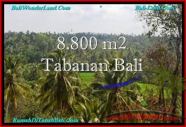 FOR SALE Exotic PROPERTY 8,800 m2 LAND IN TABANAN BALI TJTB238