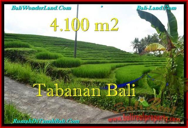 Magnificent PROPERTY 4,100 m2 LAND FOR SALE IN Tabanan Selemadeg TJTB239