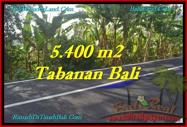 FOR SALE Affordable 5,400 m2 LAND IN TABANAN TJTB241