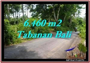 Beautiful PROPERTY 6,460 m2 LAND IN Tabanan Selemadeg FOR SALE TJTB256