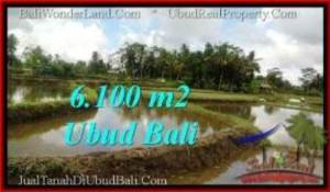 Magnificent UBUD LAND FOR SALE TJUB547