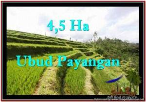 Affordable 45,000 m2 LAND FOR SALE IN UBUD BALI TJUB533