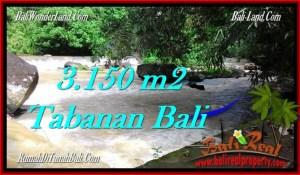 Exotic PROPERTY 3,150 m2 LAND IN Tabanan Selemadeg FOR SALE TJTB282