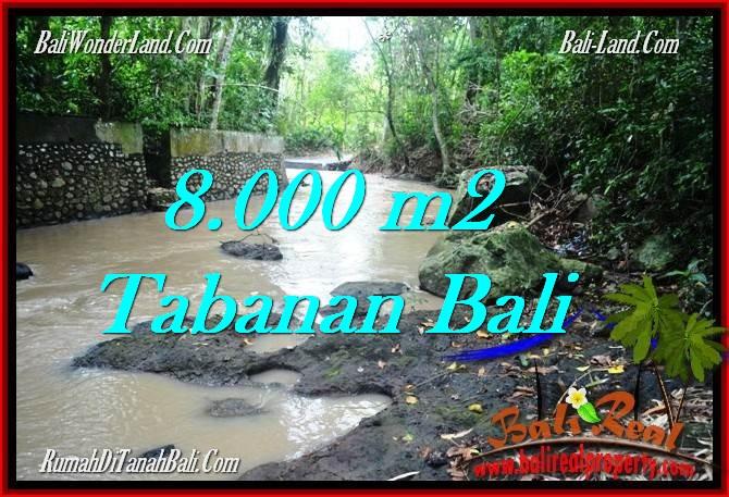 FOR SALE Affordable PROPERTY 8,000 m2 LAND IN TABANAN BALI TJTB287