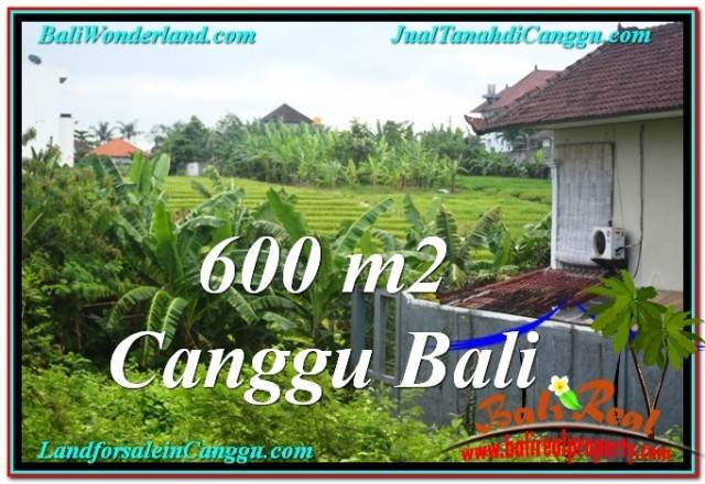 Exotic PROPERTY 600 m2 LAND FOR SALE IN CANGGU BALI TJCG206