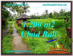 Beautiful LAND FOR SALE IN UBUD TJUB559