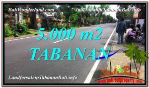 Exotic PROPERTY LAND SALE IN Badung TJTB332