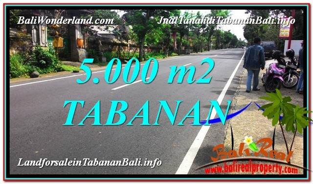 Exotic PROPERTY LAND FOR SALE IN TABANAN BALI TJTB332
