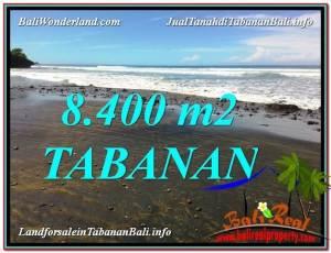 Beautiful 8,400 m2 LAND SALE IN TABANAN BALI TJTB326