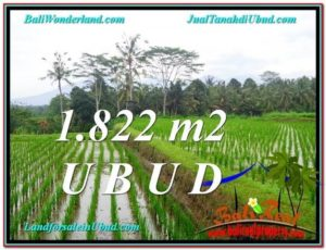 Beautiful 1,822 m2 LAND IN UBUD BALI FOR SALE TJUB574
